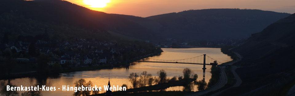wehlen_haengebruecke
